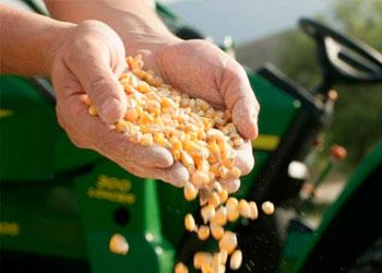 Comercialización de Granos y Semillas - Germinar SRL