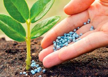 Comercialización de Insumos Agro - Germinar SRL