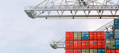 Germinar SRL - Comercio Exterior